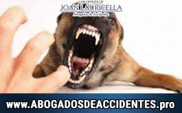 Abogdo de Ataques de Perros en Los Angeles Ca