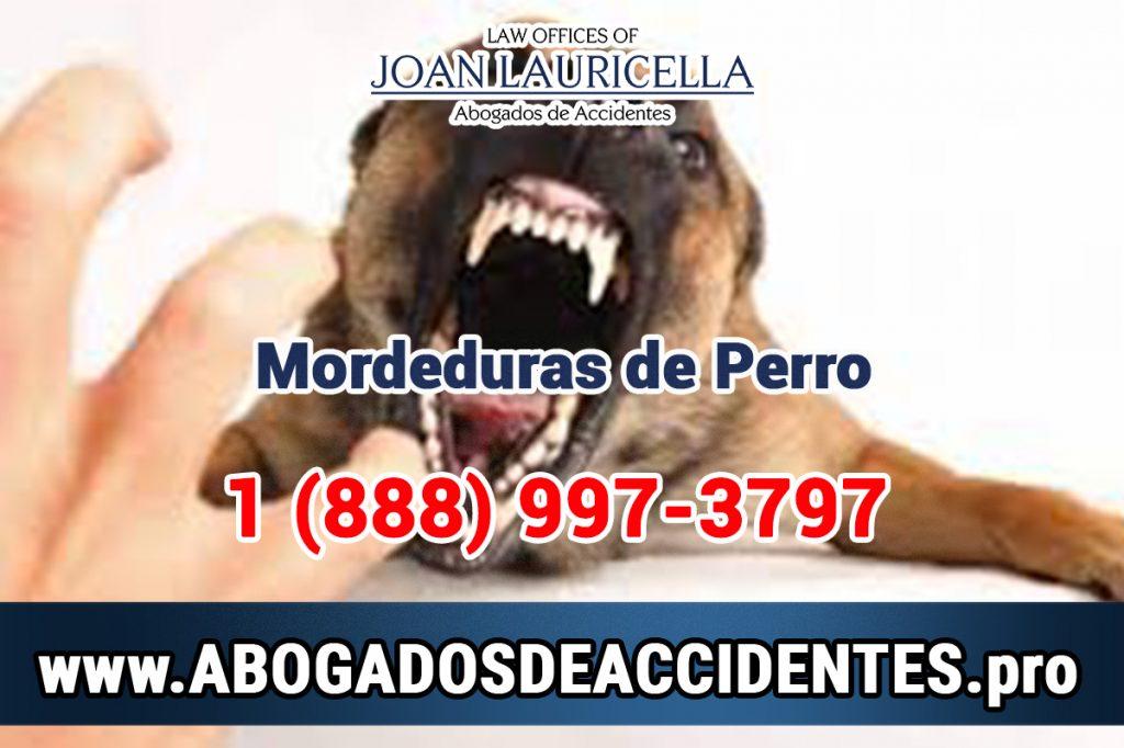 Abogado de mordedura de perro en Los Angeles California