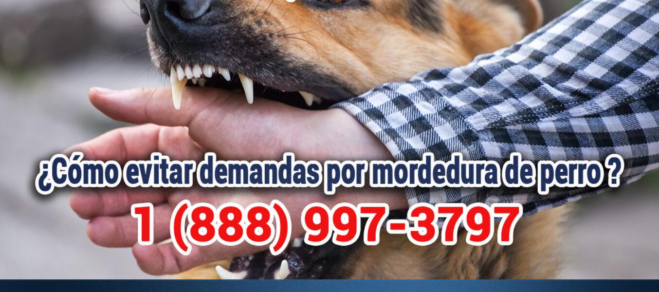 ¿Cómo Evitar Demandas Por Mordedura De Perro En Los Angeles?