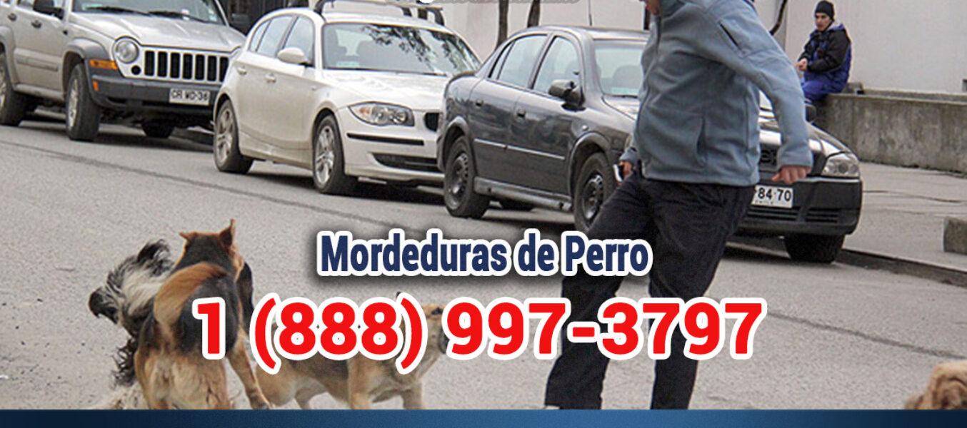 🥇Abogado de Mordeduras de Perro en Los Ángeles