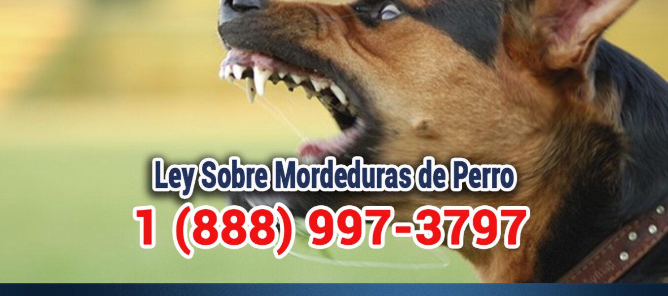 ▷🥇Ley de Mordedura de Perro en Los Ángeles