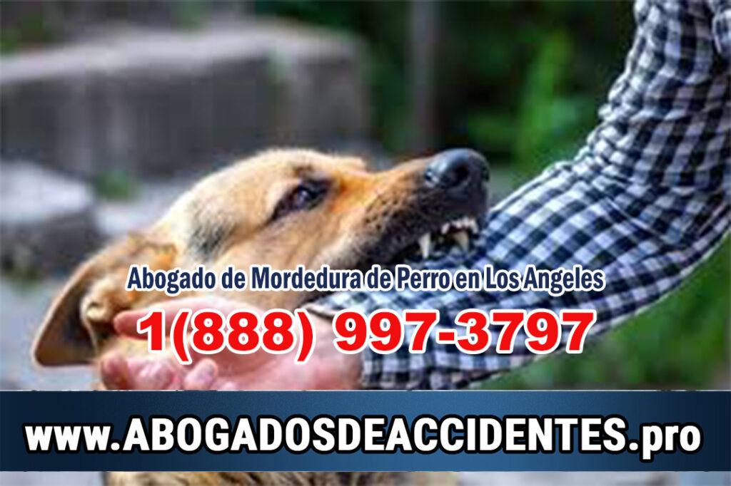 Abogado de Mordeduras de Perro en Los Angeles
